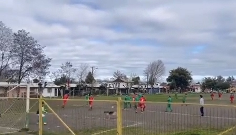 no-futebol-chileno-cachorro-esbanja-oportunismo-ao-marcar-bonito-gol-futebol-latino-06-09